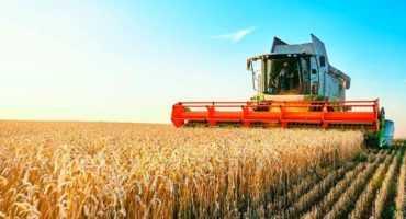 Direito Rural Agronegócio